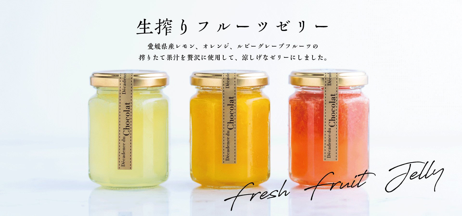 New Items/新商品