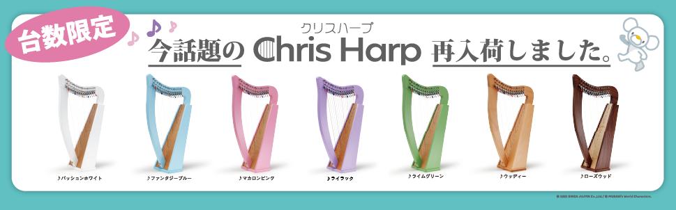 JUNO25特別色ウォルナット台数限定入荷