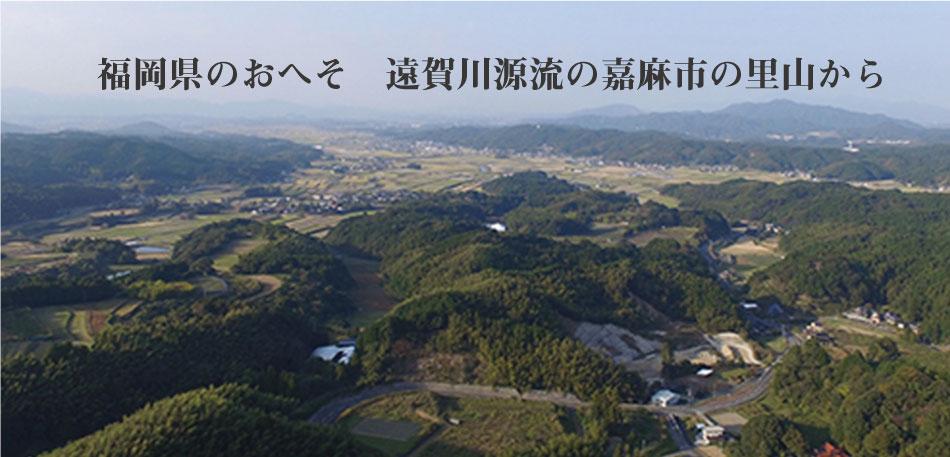 福岡県のおへそ遠賀川の源流の嘉麻市の里山